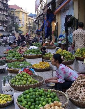 Hanoi_kroppad